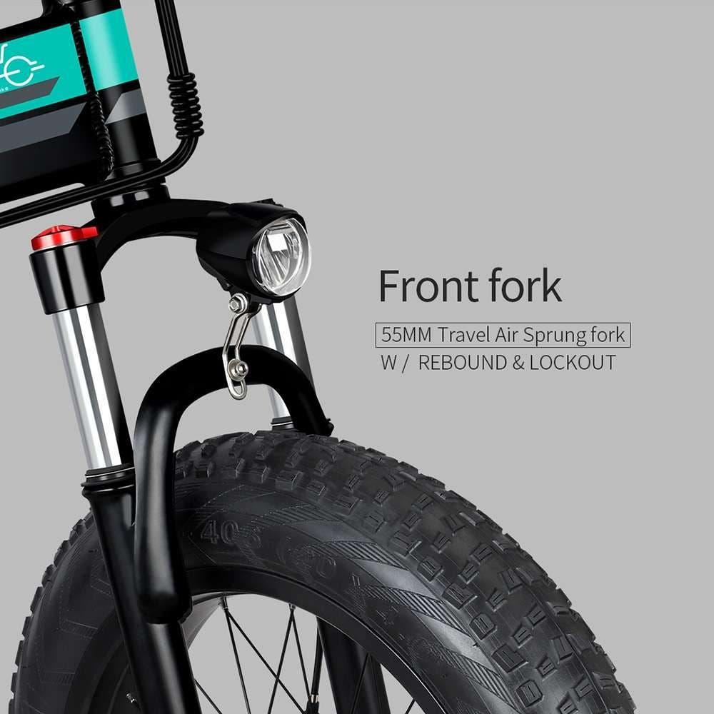 FIIDO M1 Electric Bike